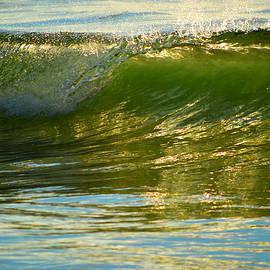 Dianne Cowen - Ocean Glide