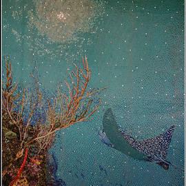 Teresa Wilson - Ocean Mosaic