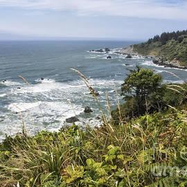 Melany Sarafis - Ocean Overlook