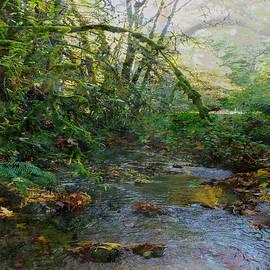 Lyn  Perry - Ocean Ripple Creek 6