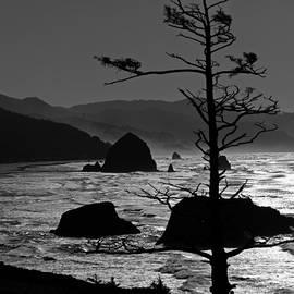 Larry Kjorvestad - Ocean Surf from Ecola State Park