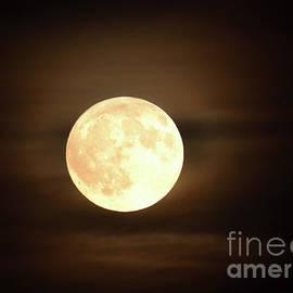 Linda Troski - October Full Hunters Moon