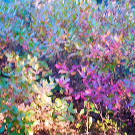 Karen Regan - October Leaves