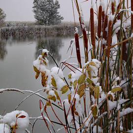 James Peterson - October Snow