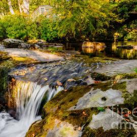 Ogwen Bank Waterfall  - Adrian Evans