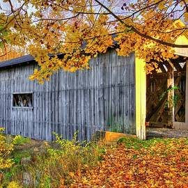 Michael Mazaika - Ohio Country Roads - South Denmark Road Covered Bridge Over Mill Creek - Ashtabula County