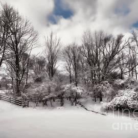 Reese Lewis - Ohio Snow