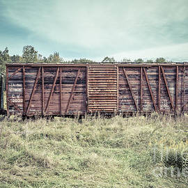 Old Abandoned Box Cars Central Vermont - Edward Fielding