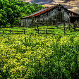 Elijah Knight - Old Barn 2