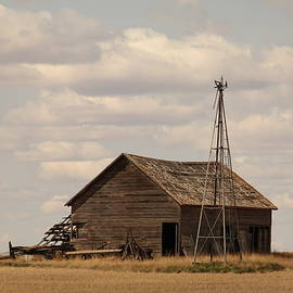 Jeff  Swan - Old barn and windmill