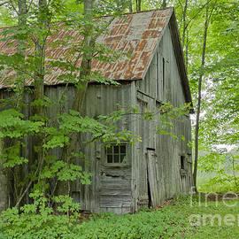 Alan L Graham - Old Barn In Summer Woods