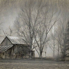 William Sturgell - Old Barn in the Trees