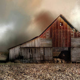 Theresa Campbell - Old Barn in Winter