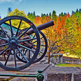 Andy Za - Old cannon. Sinaia. Romania.