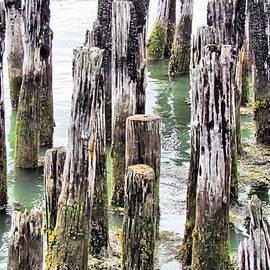 Elizabeth Dow - Old Dock Remains