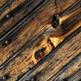 Mary Bedy - Old Door Wood 2
