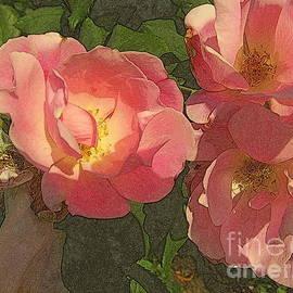Miriam Danar - Old-Fashioned Rose Delight