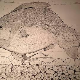 Robert Hilger - Old Fat Fish