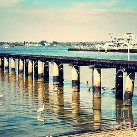 Carol Groenen - Old Fort Myers Pier with Ibises