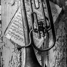 Old Horn In Black And White - Garry Gay
