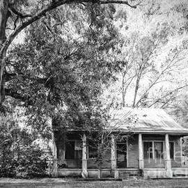 Kathleen K Parker - Old House and Tree Donaldsonville LA ART