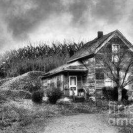 Reese Lewis - Old House By The Cornfield