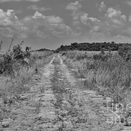 Chuck  Hicks - Old Ingraham Highway