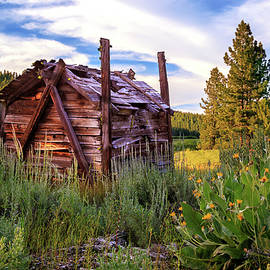 James Eddy - Old Lumber Mill Cabin