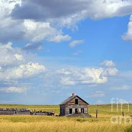 Chalet Roome-Rigdon - Old Montana Homestead