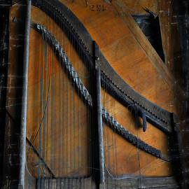 Damijana Cermelj - Old musical instrument