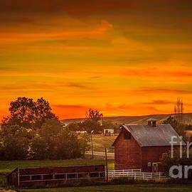 Robert Bales - Old Red Barn