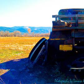 Tamara Kulish - Old Rusted Truck Near Taos 5