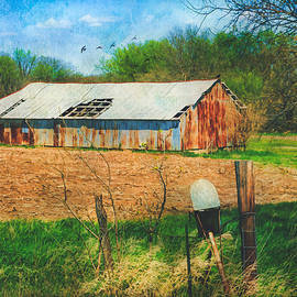 Anna Louise - Old Rusty Tin Barn and Mailbox