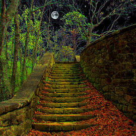 Michael Rucker - The Stone Staircase
