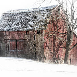 Pat Cook - Old Swayback Barn