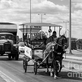 Les Palenik - Old trucks and a horse carriage