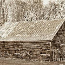 Alana Ranney - Old Weathered Barn II