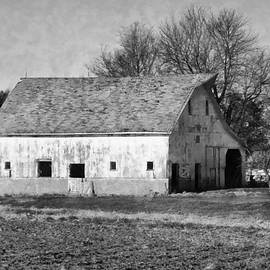 Theresa Campbell - Old White Sided Barn