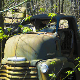 Tamara Kulish - Old Wrecks Submerged in Woods in the Springtime 16
