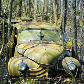 Tamara Kulish - Old Wrecks Submerged in Woods in the Springtime 6