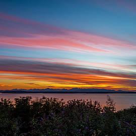 Calazones Flics - Olympic Sunset