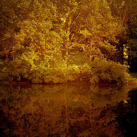 Theresa Campbell - On A Golden Pond