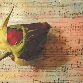 Kathy Bucari - On A Romantic Note