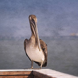 Kim Hojnacki - On The Pier - Fort Myers Beach