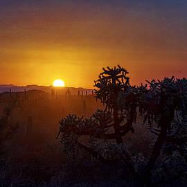 Saija Lehtonen - On The Sonoran Horizon