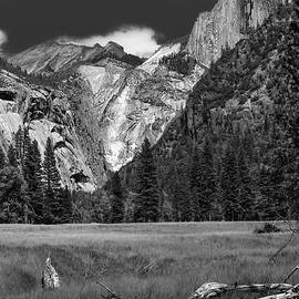 Felipe Sanchez - On The Valley Floor of Yosemite