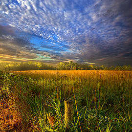 Phil Koch - On Your Way Back Home