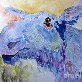 Sandy McIntire - Once in a Blue Moose