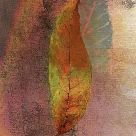 Rene Crystal - one beautiful ash pre Autumn