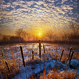 Phil Koch - One Day At A Time